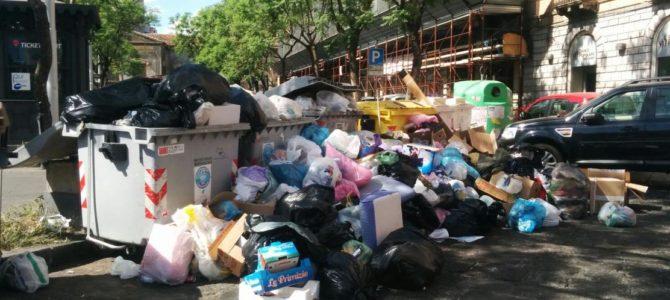 Cassazione. Disservizio nella raccolta rifiuti: diritto alla riduzione della TARI